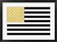 Gold Flag 2 Framed Print