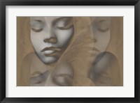 Grey Beauty Framed Print