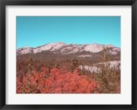 Framed Sierra Nevada Mountains