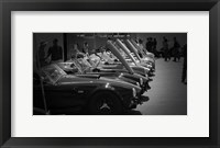 Framed 427 Cobras