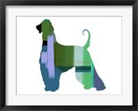 Framed Afghan Hound 1