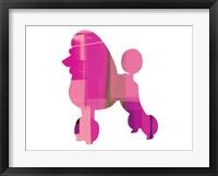 Framed French Poodle