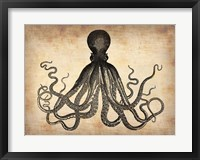 Framed Vintage Octopus