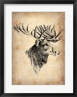 Framed Vintage Moose
