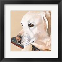 Framed Dlynn's Dogs - Shell