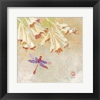 Dragonfly Lustre II Framed Print