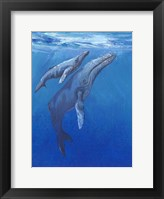 Under Sea Whales I Framed Print