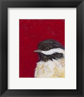 Bird Portrait II Framed Print