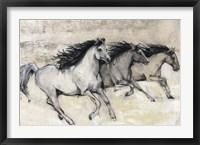 Horses in Motion II Framed Print
