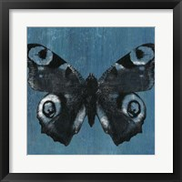 Chambray Butterflies I Framed Print