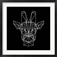 Framed Giraffe on Black