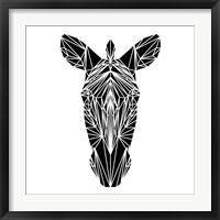 Framed Black Zebra