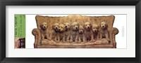 Framed Golden Puppy Line Up