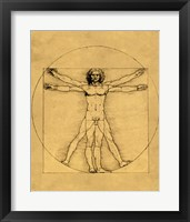 Framed Proportions of the Human Figure - Vitruvian Man