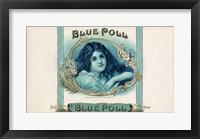 Framed Blue Poll