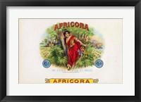 Framed Africora