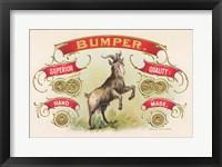 Framed Bumper