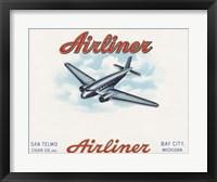 Framed Airliner