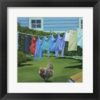 Framed Rooster