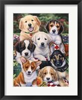 Framed Garden Puppies