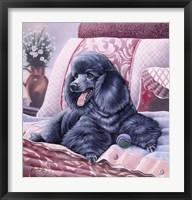 Framed Black Poodle
