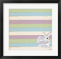 Rabbit Grey Framed Print