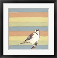 Little Brown Bird Framed Print