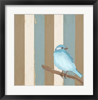 Teal Bird With Stripes Framed Print