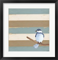 Dark Bluebird Framed Print