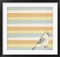 Bird Stripes Framed Print