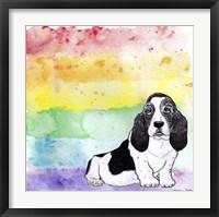 Framed Rainbow Basset Hound