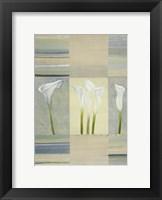 Calla Lily Dance II Framed Print