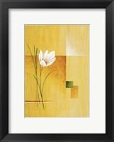 White Bloom 2 Framed Print