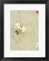White Flowers 1 Framed Print