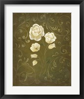 Framed White Flower and Buds I