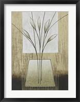 Taupe II Framed Print