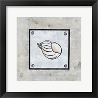 Sea Shell on Blue I Framed Print