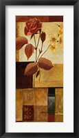 Red Rose II Framed Print