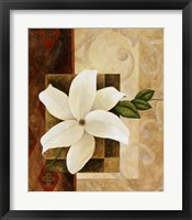 White Delight II Framed Print
