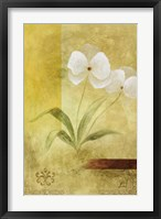 Citrus Delight II Framed Print