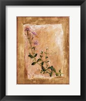 Botanical I Framed Print