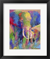 Framed Elephant 1
