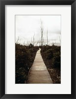 Framed Devastation Trail