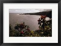 Framed Honomanu Bay