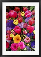 Framed Pink Spring Flowers