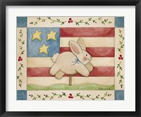 Framed Bunny With Flag Background