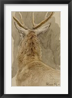 Framed Study of a Deer