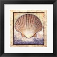 Framed Shell