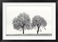 Framed First Snow