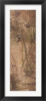 Framed Papyrus